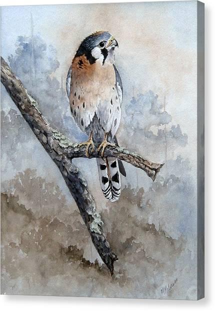 Kestrel Perch Canvas Print