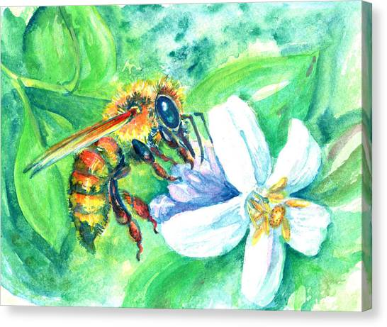 Key Lime Honeybee Canvas Print