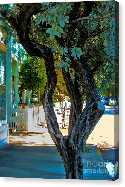 Key West Beauty Canvas Print by Claudette Bujold-Poirier
