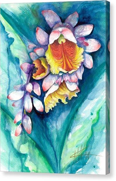 Key West Ginger Canvas Print