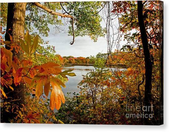 Kickimuit View Canvas Print