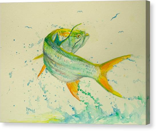 Fish Tanks Canvas Print - King Acrobatics  by Yusniel Santos
