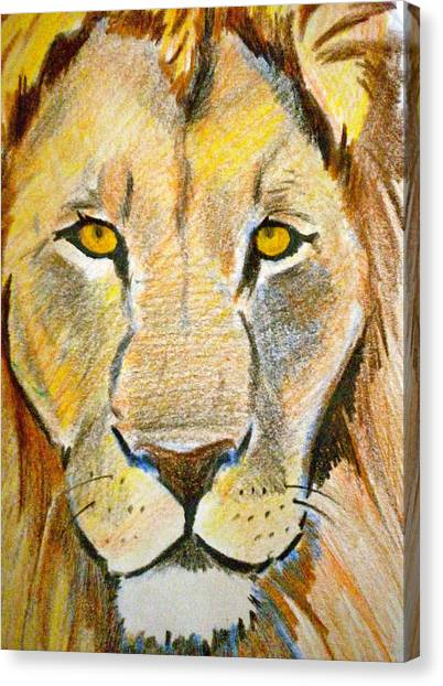 Furry Lion Canvas Prints (Page #4 of 22) | Fine Art America