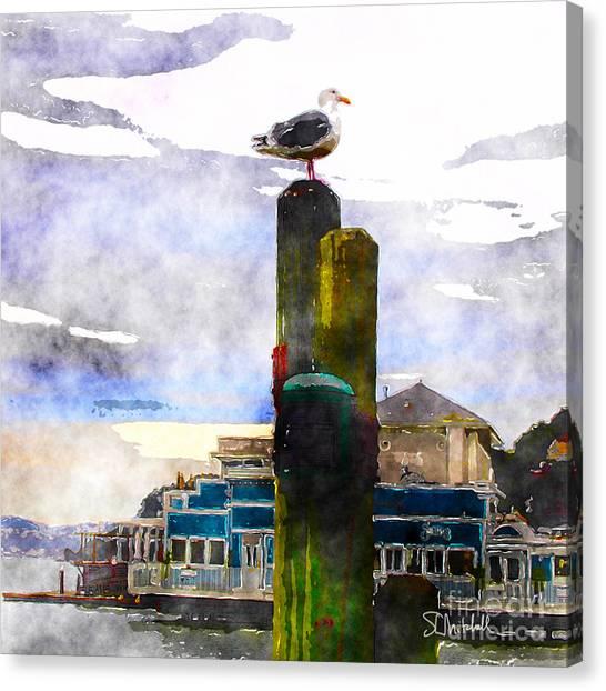Sausolito Gull Canvas Print