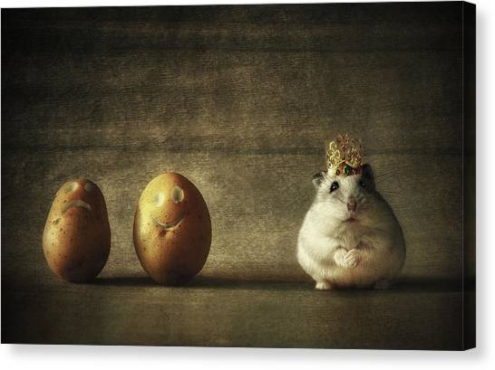 Humour Canvas Print - King Of The Potato People... by Vaclav Kindl