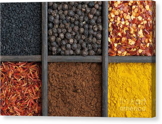 Indian Corn Canvas Print - Kitchen Spices by Tim Gainey