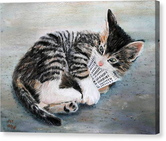 Kitten With Birdie Canvas Print