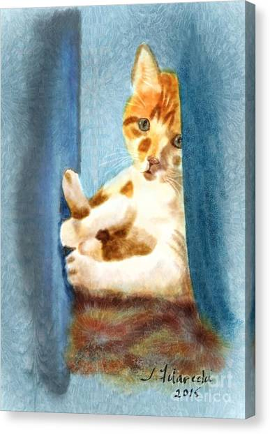 Kitty In A Corner Canvas Print