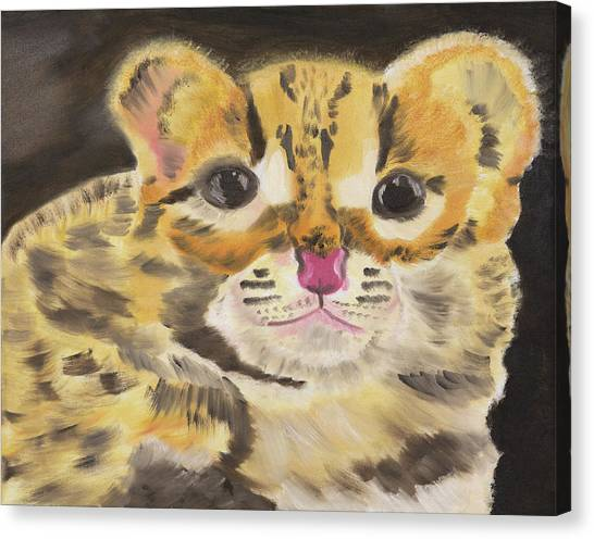 Peek A Boo Kitty Canvas Print