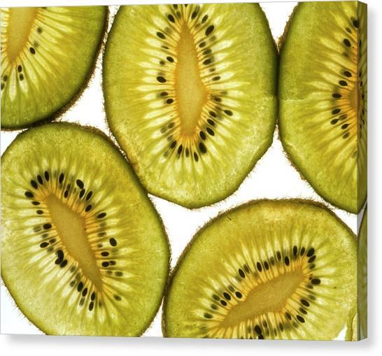 Kiwis Canvas Print - Kiwi Fruit by Adrienne Hart-davis/science Photo Library