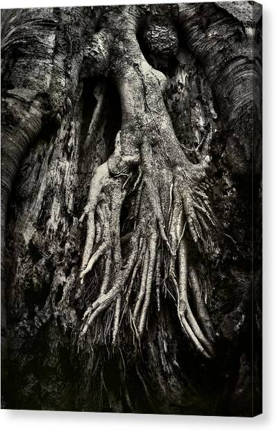 Kneeling At The Feet Of The Green Man Canvas Print