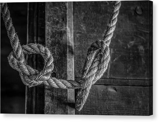 Knots Canvas Print