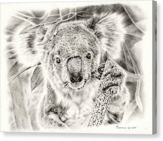 Koala Garage Girl Canvas Print