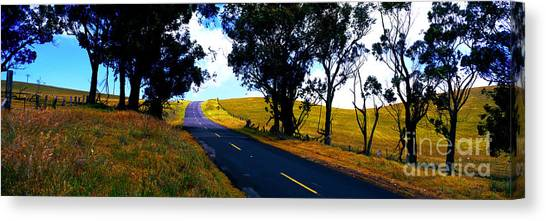 Kohala Mountain Road  Big Island Hawaii  Canvas Print