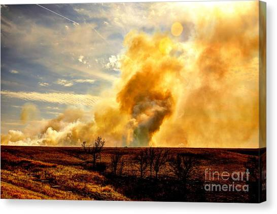 Konza Prairie Burn Canvas Print