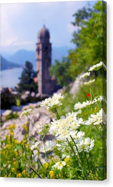 Kotor Wildflowers Canvas Print by Saya Studios