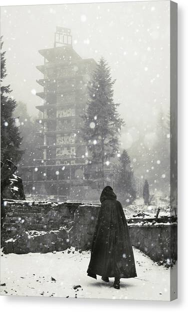 Snowflakes Canvas Print - Kozubnik by Cambion Art