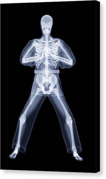 Kung Fu Canvas Print - Kung Fu Greeting by Gustoimages/science Photo Library