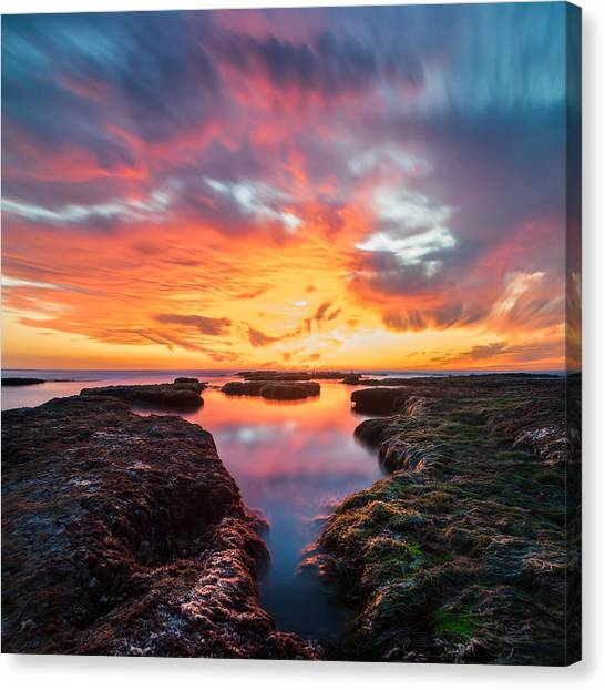 Boulder Canvas Print - La Jolla California Reflections - Square by Larry Marshall
