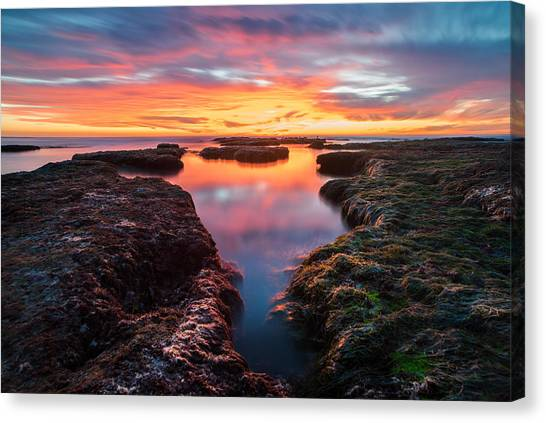 Boulder Canvas Print - La Jolla California Reflections by Larry Marshall