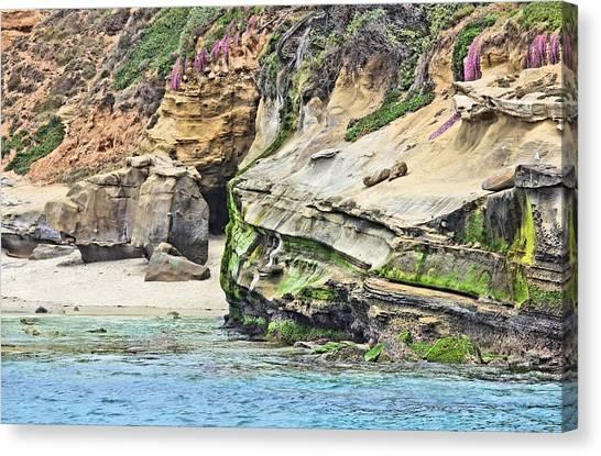 La Jolla Cliffs Canvas Print