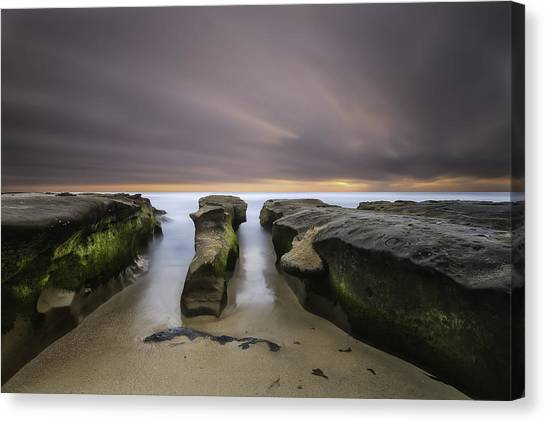 Reef Canvas Print - La Jolla Reef by Larry Marshall