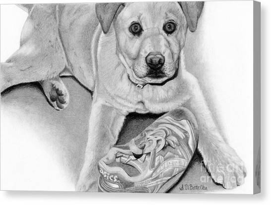 Sneakers Canvas Print - Sneaker Snatcher- Labrador And Chow Chowx Mix by Sarah Batalka