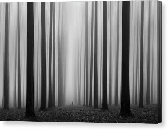 Mood Canvas Print - Labyrinth by Jochen Bongaerts