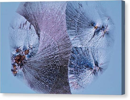 Biochemical Canvas Print - Lactose Crystals by Antonio Romero