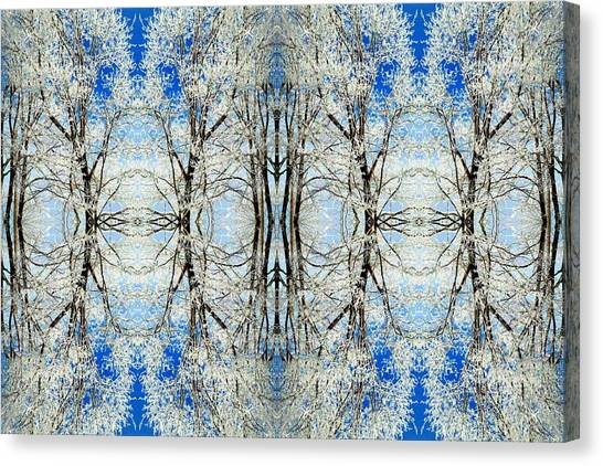 Lacy Winter Trees Abstract Art Photo Canvas Print