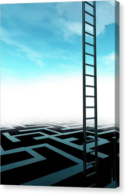 Ladder And Maze Canvas Print by Victor Habbick Visions/science Photo Library