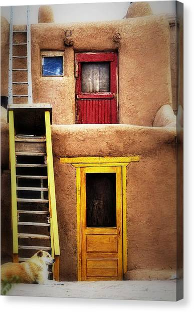 Ladders Doors And The Dog Canvas Print