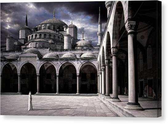 Turkeys Canvas Print - Lady And The Mosque by Daniel Murphy