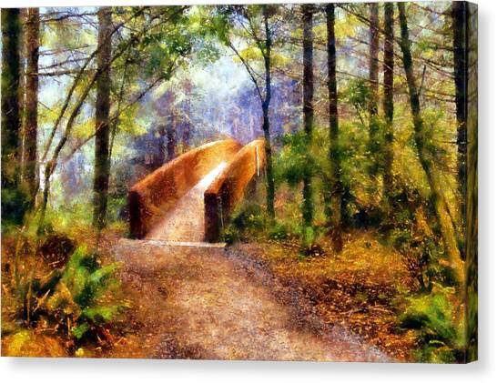 Lady Bird Johnson Grove Bridge Canvas Print