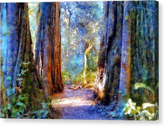 Lady Bird Johnson Grove Canvas Print