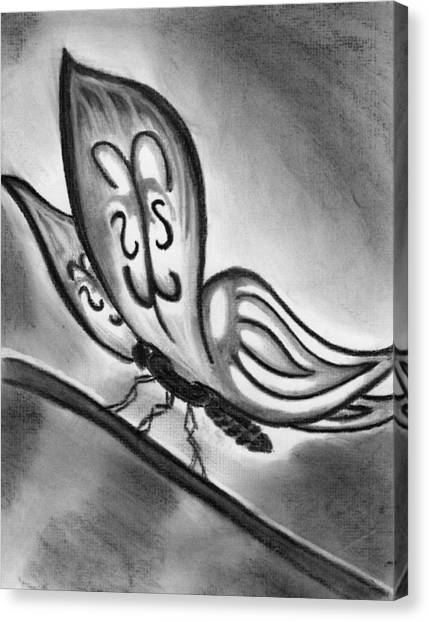 Lady Ghostwing Canvas Print by Angie Brown