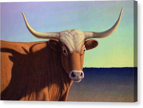 Bulls Canvas Print - Lady Longhorn by James W Johnson