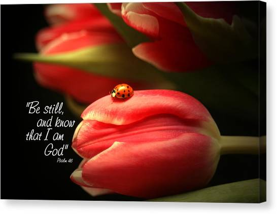 Bible Verses Canvas Print - Ladybug And Tulip by Linda Fowler