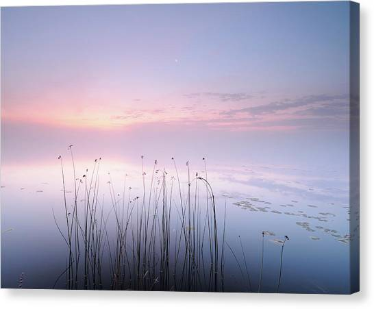 Lake Canvas Print by