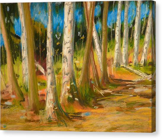 Lake Champlain Woods Canvas Print by Valerie Lynch