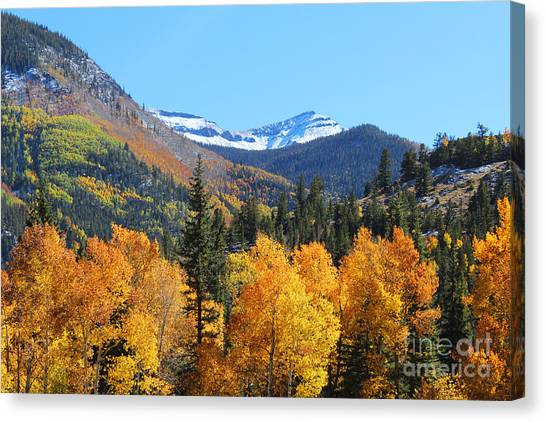 Lake City In The Fall Canvas Print