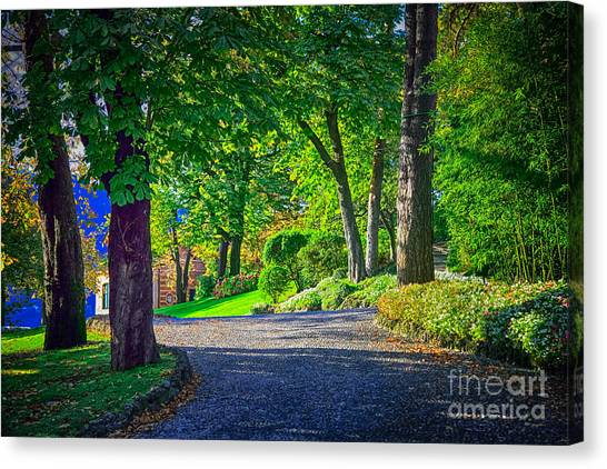 Lake Como Path Canvas Print
