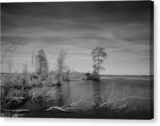 Lake Drummond Canvas Print