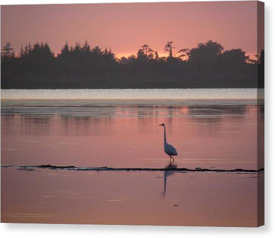 Lake Earl Sunset  Canvas Print