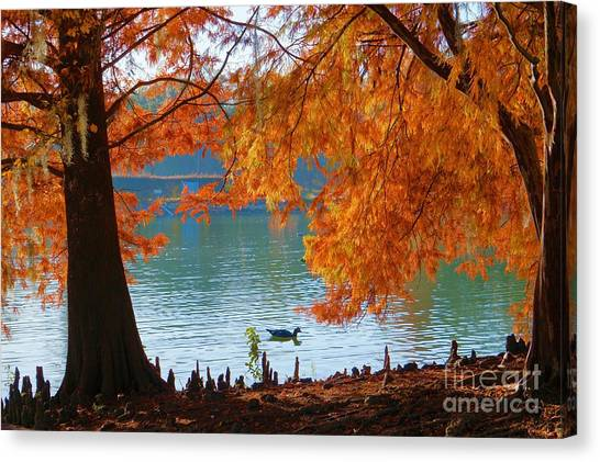 Lake Ella Morning Canvas Print