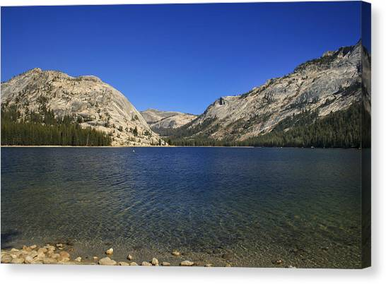 Lake Ellery Yosemite Canvas Print