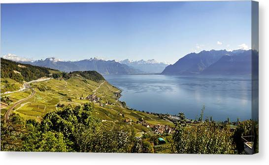 Lake Geneva Vineyards Canvas Print