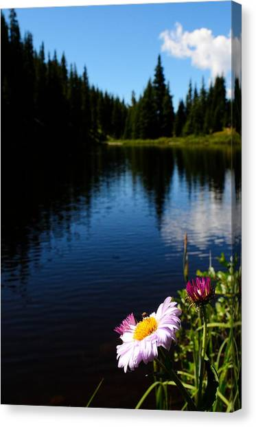 Lake Irene Canvas Print