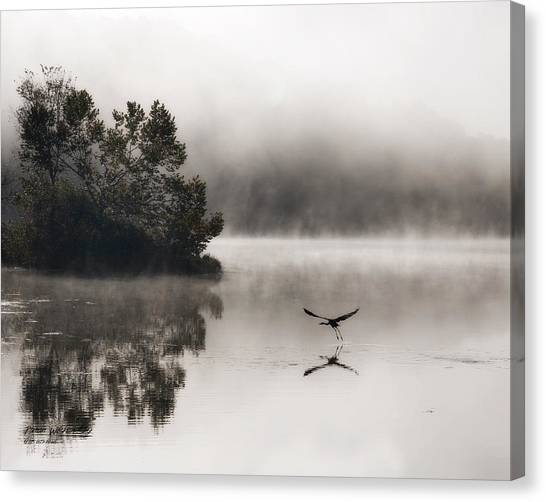 Lake Logan Fog And Heron - Flight Canvas Print
