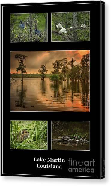 Cottonmouths Canvas Print - Lake Martin Louisiana Poster by Priscilla Burgers